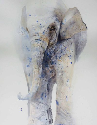 White Elephant with Blue Dots - 150x105cm